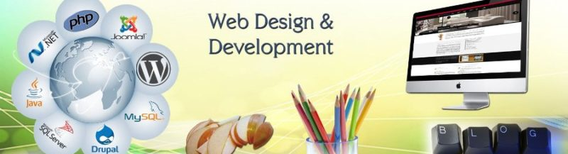 website development company in Gurgaon